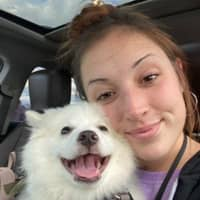 Sarina's dog day care