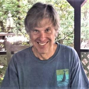 Stewart P.