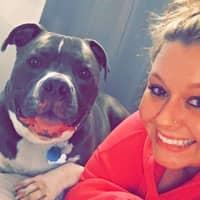 Ciera's dog day care