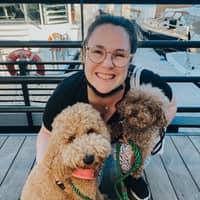 Tram's dog day care