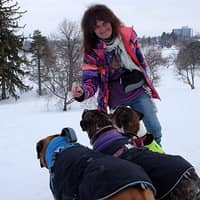 Jarmila & Eileen's dog boarding