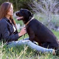 dog walker Jenny