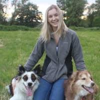 Kaitlin's dog day care