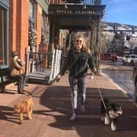 Olivia's dog boarding