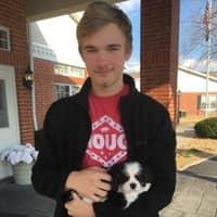 Christopher's dog boarding