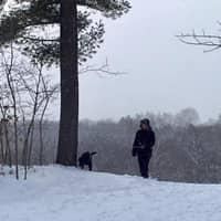 dog walker Liam
