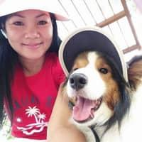Pinky's dog boarding