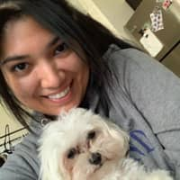 Deanna's dog boarding