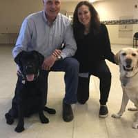 Tim's dog day care