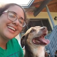 Marla's dog day care