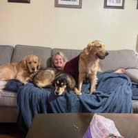 pet sitter Tracey & Jacob