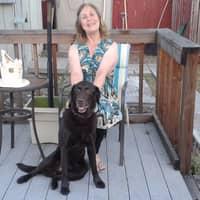 Laurel's dog day care