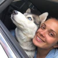 Olena's dog day care