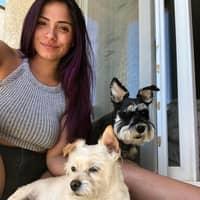 dog walker Francesca Brizuela