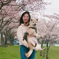 pet sitter Chengu
