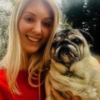 Tawnya's dog day care