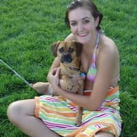 Katherine & Jordan's dog day care