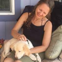 Zita's dog day care