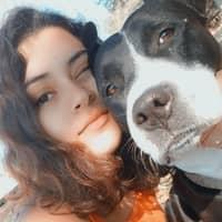 dog walker Vita