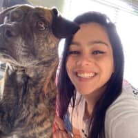 Chaunte's dog day care