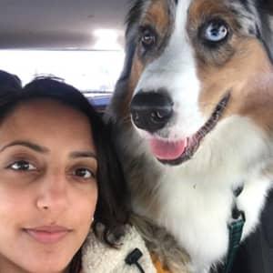 Shivani P.
