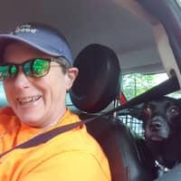 Jrobin's dog day care