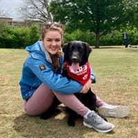Shona's dog day care