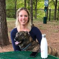 Liz & David's dog day care
