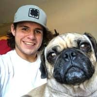 Marco's dog boarding