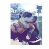 Estella's dog day care