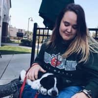 Madaline's dog day care