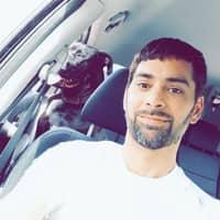 Shahid's dog boarding