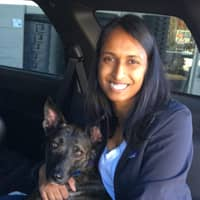 Himani's dog day care