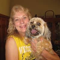 Rita's dog day care