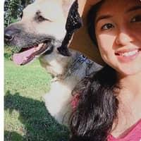 Maribeth's dog day care