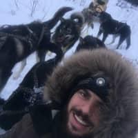 Nikolai's dog boarding