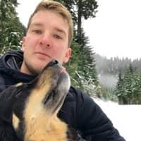 Kyle's dog boarding