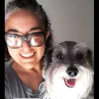 Claudia Berenice's dog day care