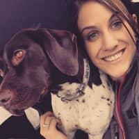 Mckena's dog day care
