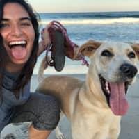 dog walker Lally