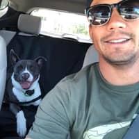 dog walker Rodrigo