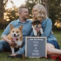 Lacy & Josh's dog day care
