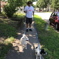 dog walker Anthony