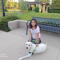 Suja's dog boarding