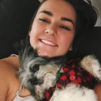 Charli's dog boarding