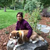 Geetha's dog boarding