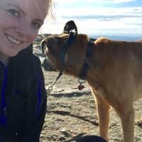 Rachel Eileen's dog boarding