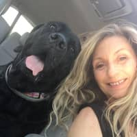 Yvette V.'s profile image