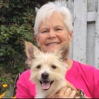 Dawn M.'s profile image