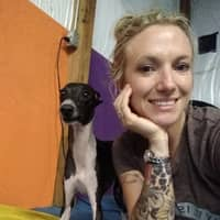 Lyndsey's dog day care